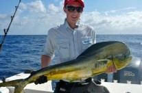 using FAD to catch big Mahi mahi